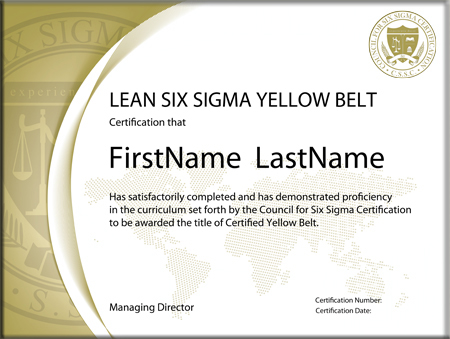 Lean Six Sigma Yellow Belt: Standard Exam (Single Certification ...