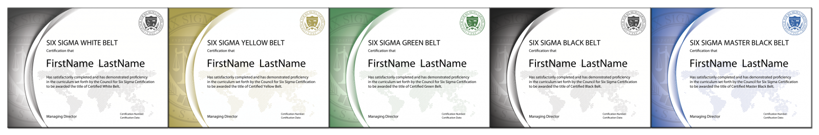 The Council For Six Sigma Certification Official Industry Standard