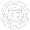 CSSC---Transparent-Shield-Grey2