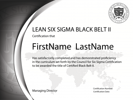 Lean Six Sigma Black Belt Certification II