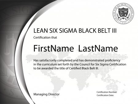 Lean Six Sigma Black Belt Certification III