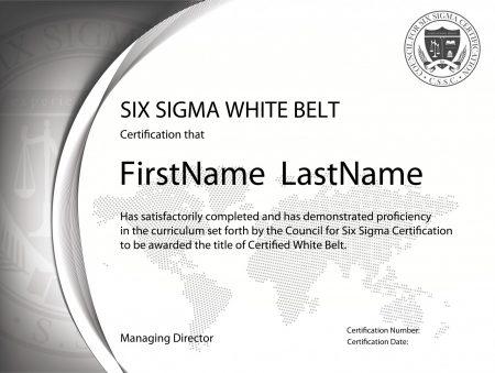 Six Sigma White Belt Certification